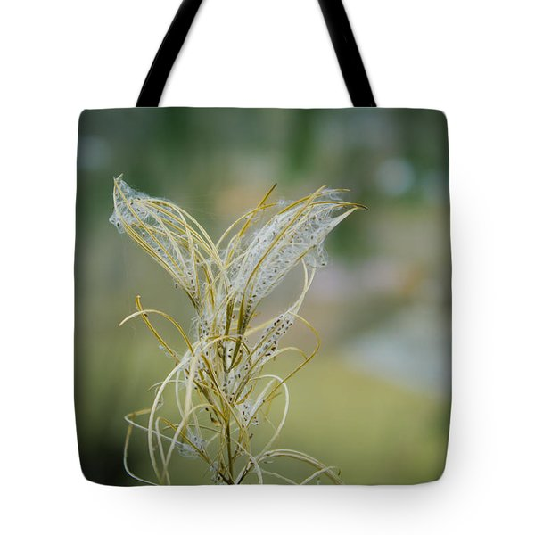 Fluffy Weed Close-up Against Blurry Background Tote Bag