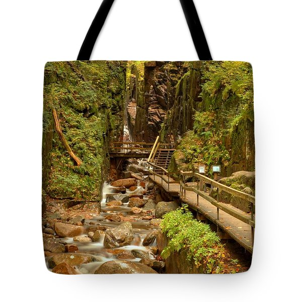 Flume Gorge At Franconia Notch Tote Bag
