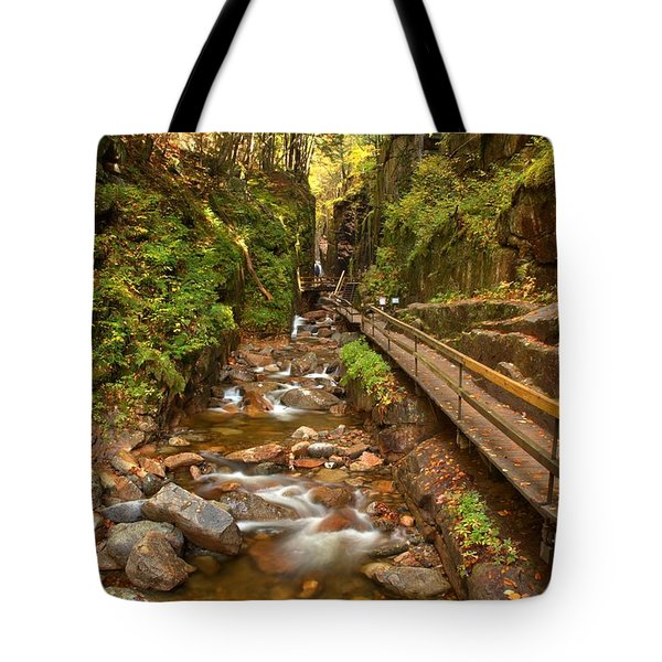 Flume Gorge Boardwalk Tote Bag