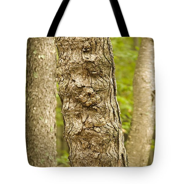 Fluted Tree Tote Bag