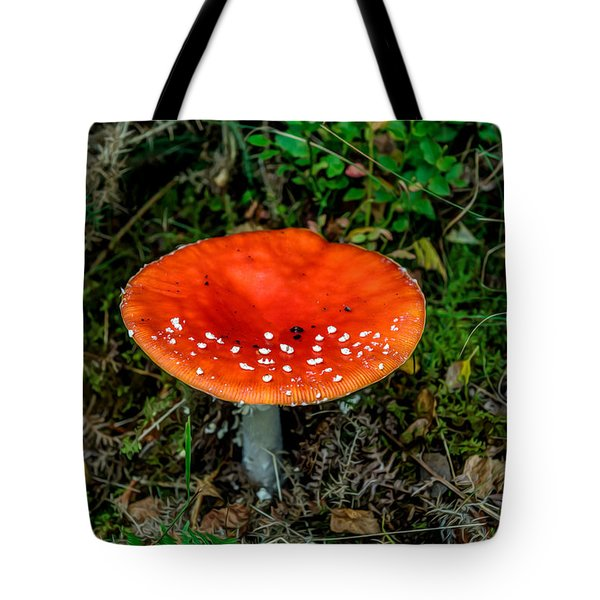 Fly Agaric Fungi Tote Bag by Adrian Evans