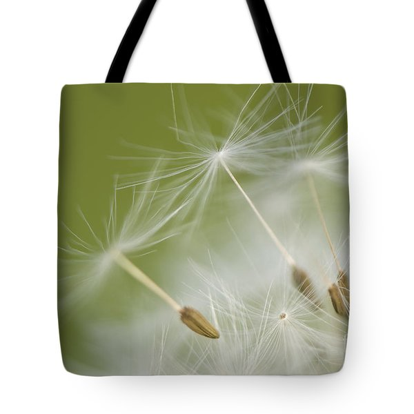 Fly Away Tote Bag by Anne Gilbert