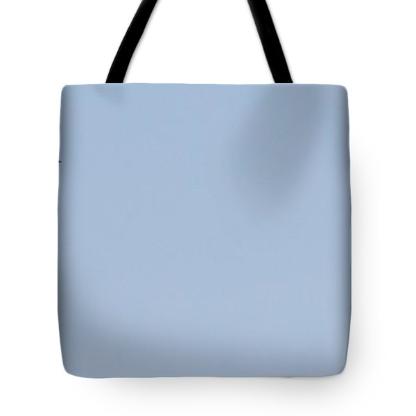 Fly Away Tote Bag by David S Reynolds