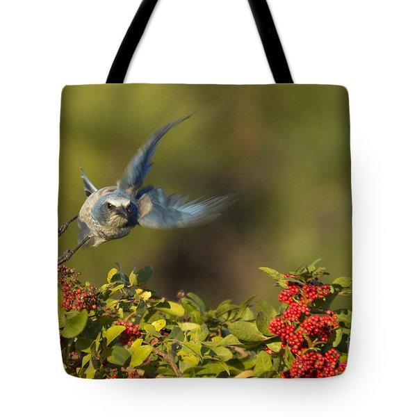 Flying Florida Scrub Jay Photo Tote Bag