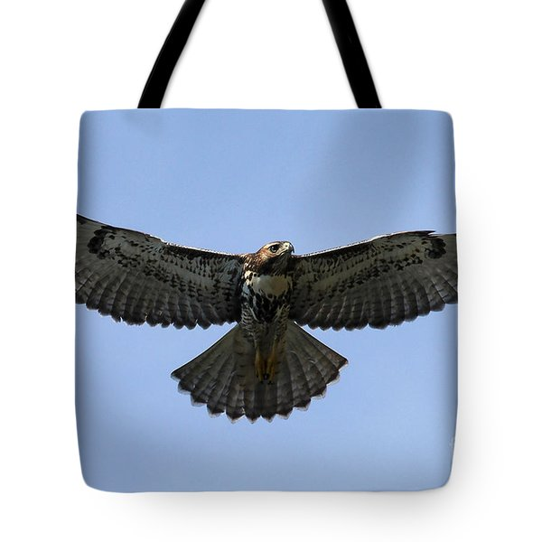 Flying Free - Red-tailed Hawk Tote Bag