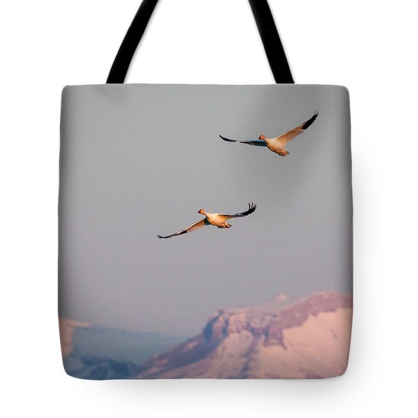 Tote Bag featuring the photograph Flying High by Jack Bell