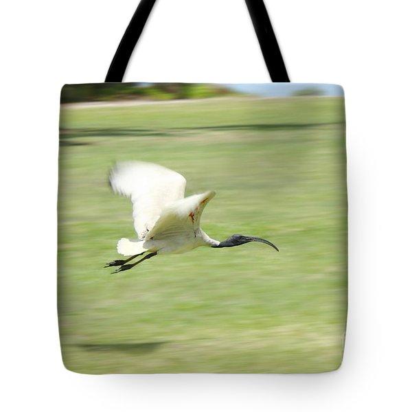 Flying Ibis Tote Bag