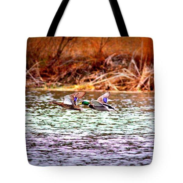 Flying Low - Mallard Tote Bag by Travis Truelove