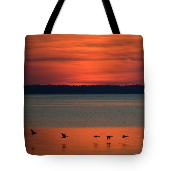 Flying North Tote Bag