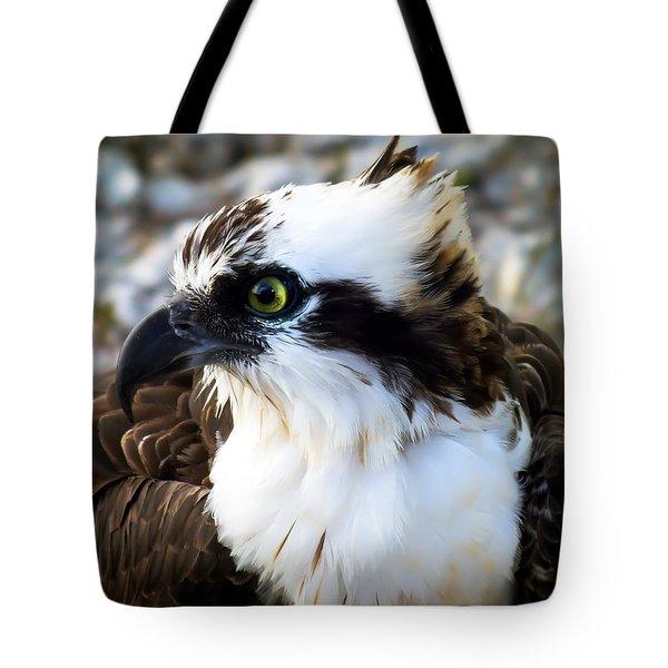 Focused Tote Bag by Karen Wiles