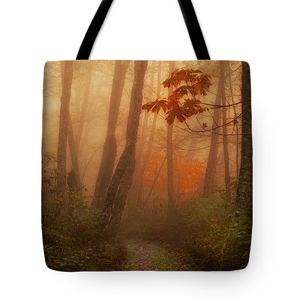 Foggy Autumn Tote Bag by Mary Jo Allen
