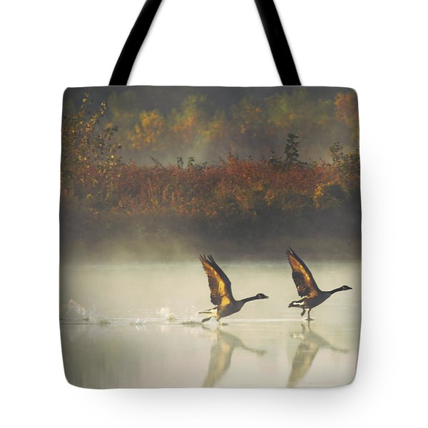 Foggy Autumn Morning Tote Bag by Elizabeth Winter