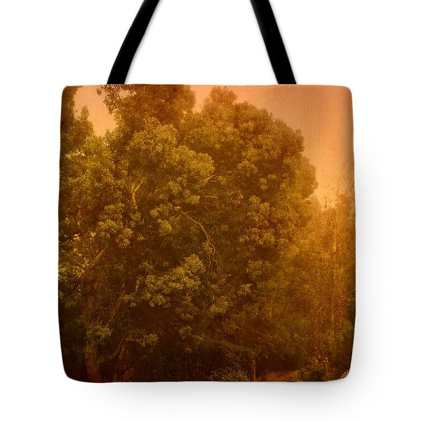 Foggy Drizzly City Morning Tote Bag by Angela A Stanton