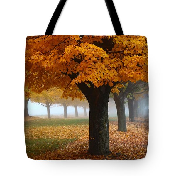 Foggy Fall Morning Tote Bag by Lynn Hopwood
