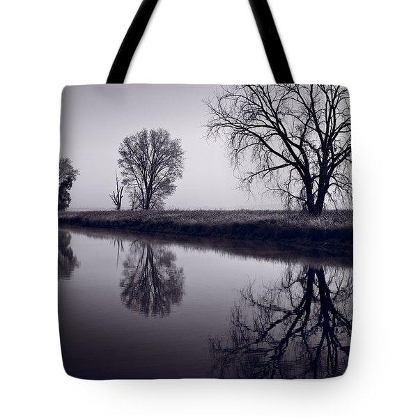 Foggy Morn Bw Tote Bag by Steve Gadomski