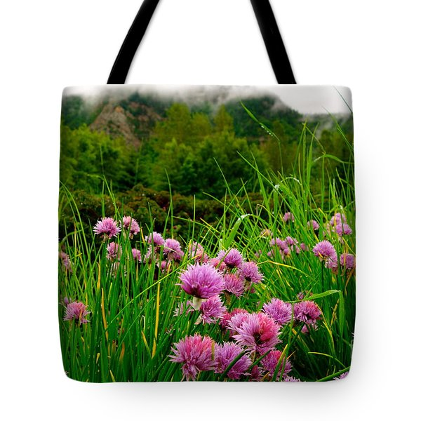Tote Bag featuring the photograph Foggy Morning by Jacqueline Athmann