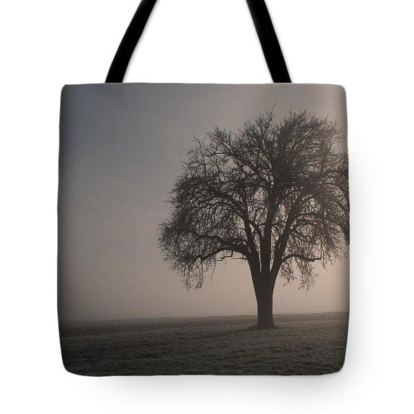 Foggy Morning Sunshine Tote Bag