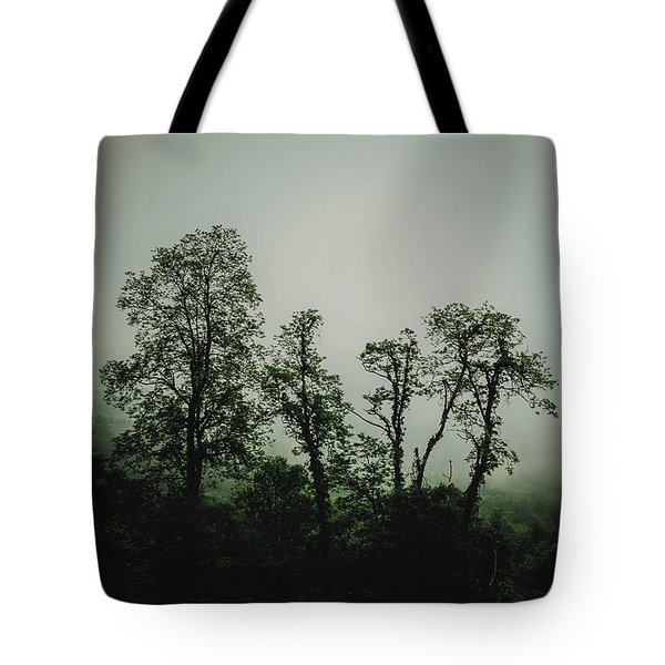 Tote Bag featuring the photograph Foggy Mountain Morning At The Meadows Of Dan by John Haldane
