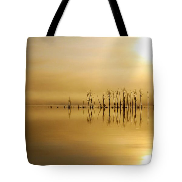 Foggy Rise Tote Bag by Roger Becker