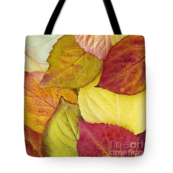 Foliage Quilt Tote Bag by Alan L Graham