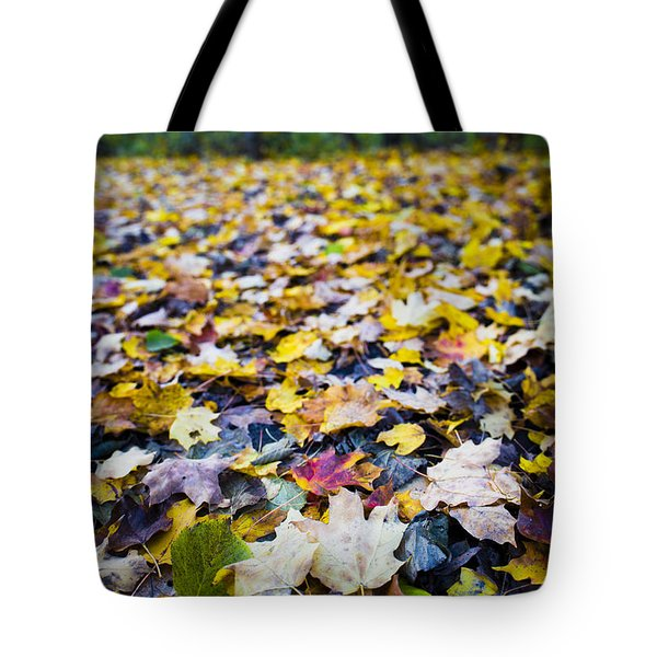 Tote Bag featuring the photograph Foliage by Sebastian Musial