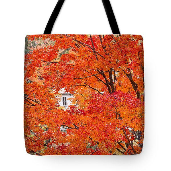 Tote Bag featuring the photograph Foliage Window by Alan L Graham