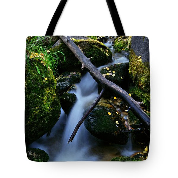 Tote Bag featuring the photograph Follow Me by Jeremy Rhoades