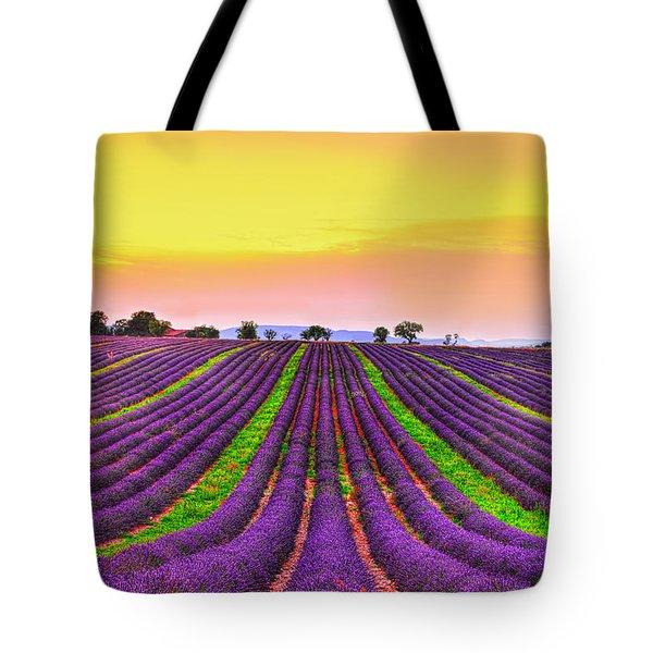 Follow My Dreams Tote Bag by Midori Chan