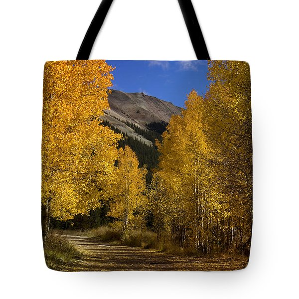 Tote Bag featuring the photograph Follow The Gold by Ellen Heaverlo