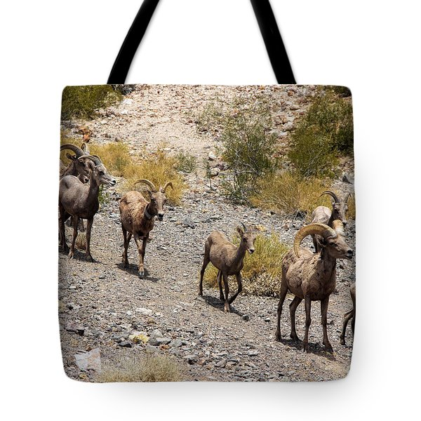 Follow The Leader Tote Bag by Tammy Espino