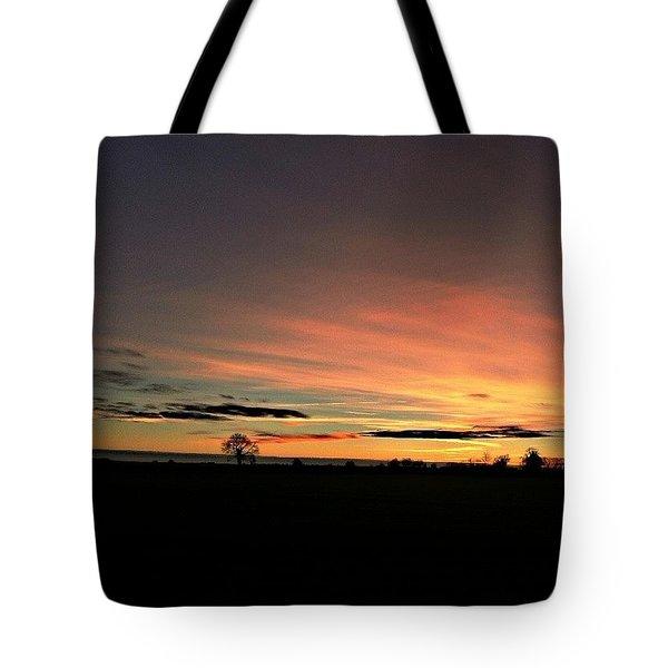 Following The Sun Tote Bag