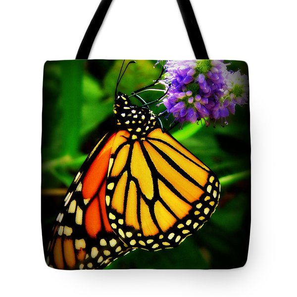 Food For Flight Tote Bag by Lainie Wrightson