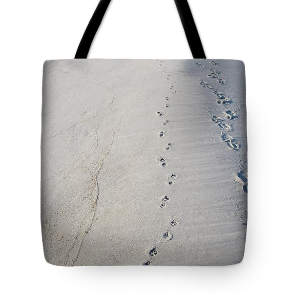 Footprints And Pawprints Tote Bag