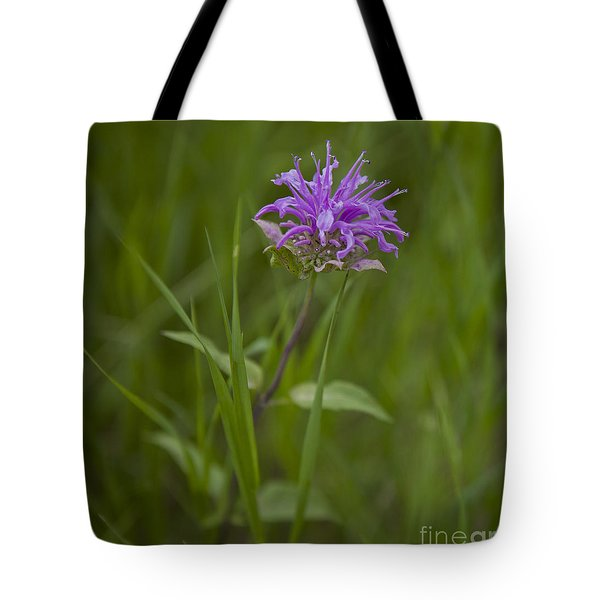 For Bees Tote Bag