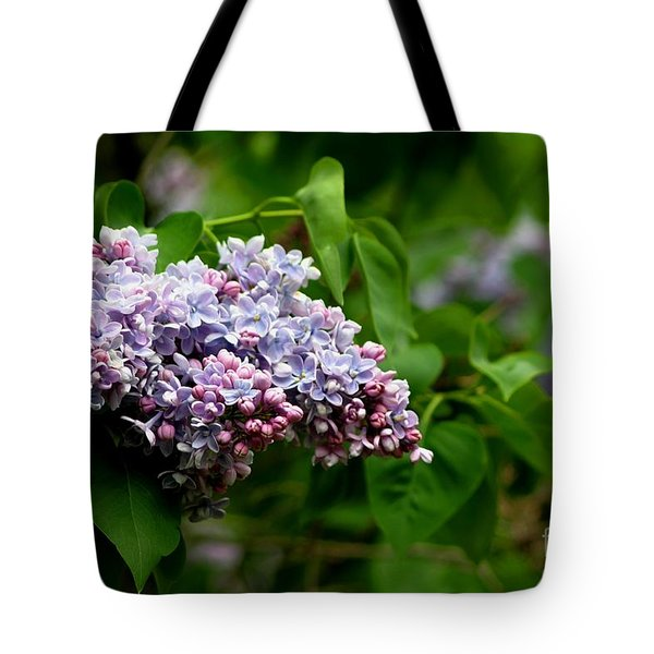 For The Love Of Lilac Tote Bag by Living Color Photography Lorraine Lynch