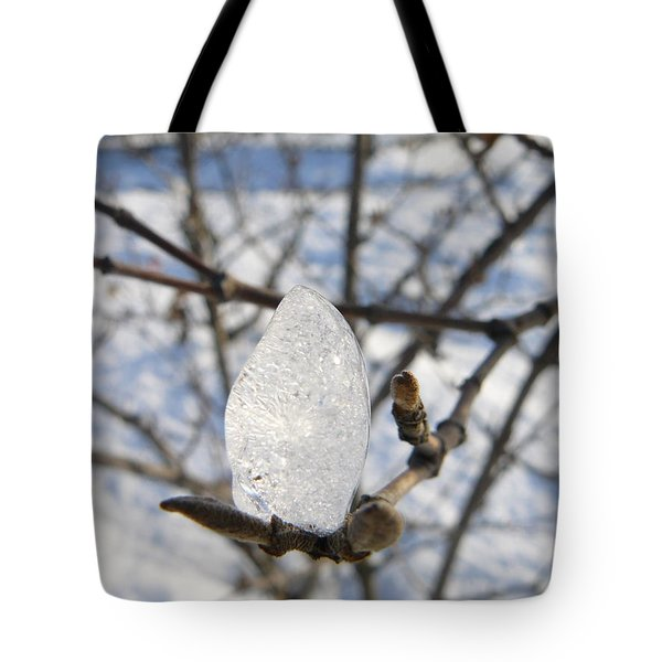 Tote Bag featuring the photograph For You by Jane Ford
