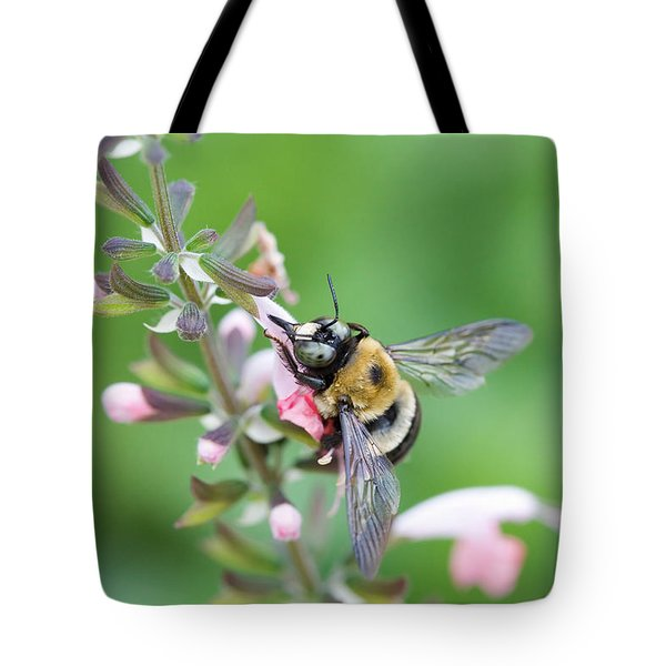 Foraging For Nectar Tote Bag