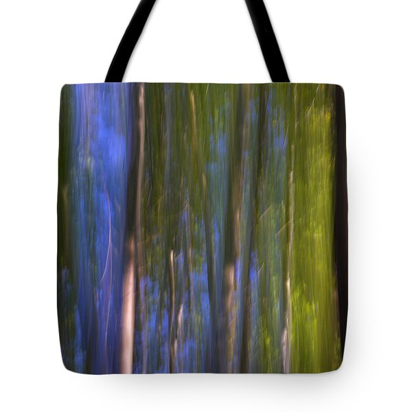 Forest Dreams Tote Bag by Guido Montanes Castillo