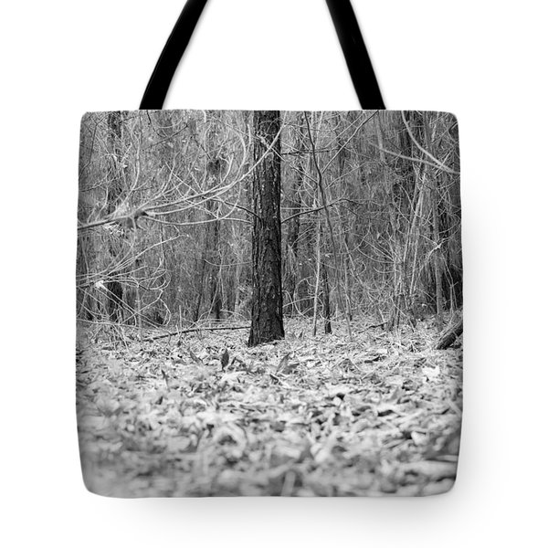 Forest Floor Black And White Tote Bag