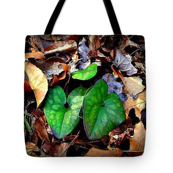 Tote Bag featuring the photograph Forest Flora by Tara Potts