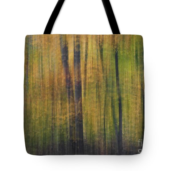 Forest Glow Tote Bag by Susan Candelario