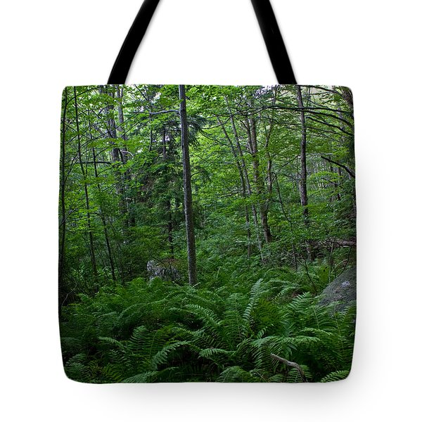Tote Bag featuring the photograph Forest Green by Greg DeBeck