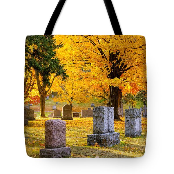 Autumn At Forest Hill Tote Bag by Mary Amerman