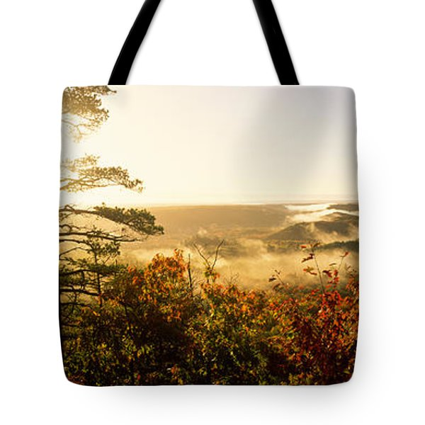 Forest In Autumn At Sunset, Ottawa Tote Bag