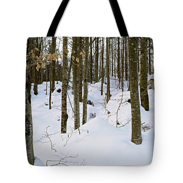Forest Near Lake Bled, Upper Carniola Tote Bag