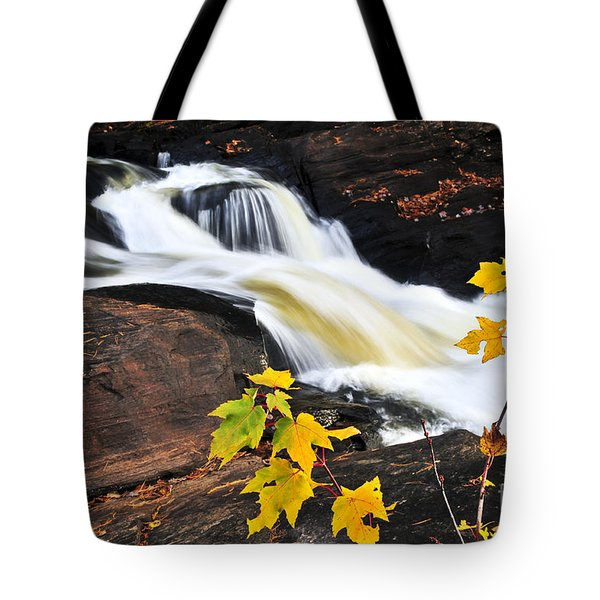 Forest River In The Fall Tote Bag