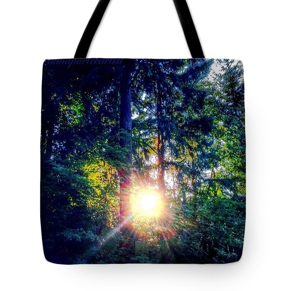 Forest Sunset In My Neighborhood Tote Bag by Anna Porter
