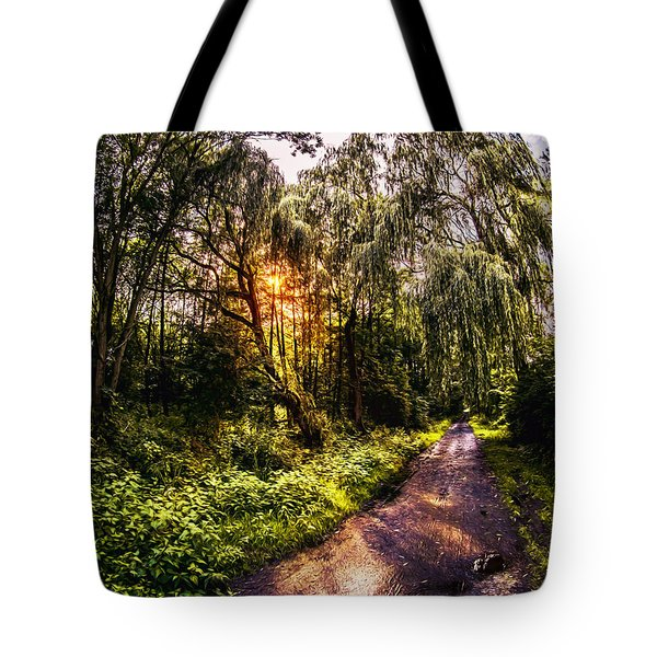 Forest Track Tote Bag by Daniel Heine