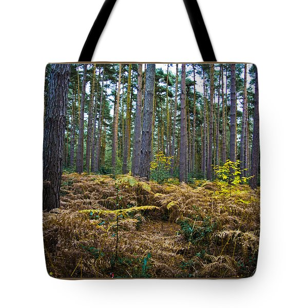 Tote Bag featuring the photograph Forest Trees by Maj Seda