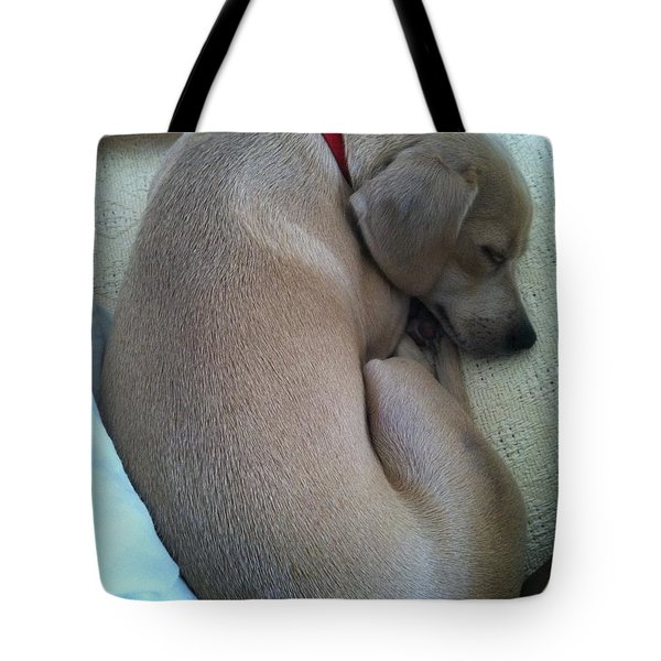 Forever Home Tote Bag by Angela J Wright